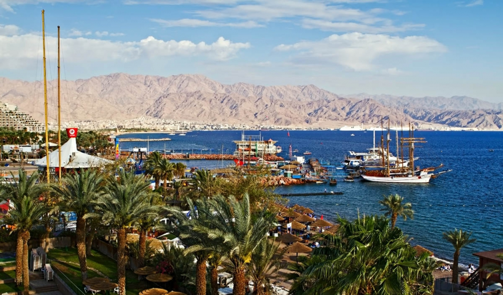 Palm trees in eilat