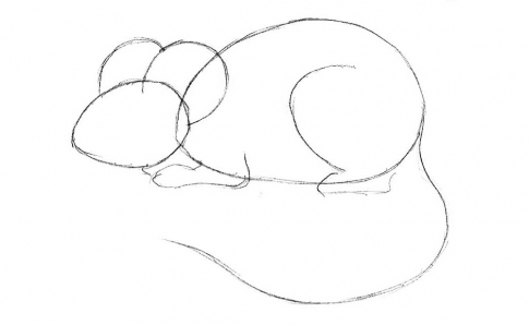 How to draw a mouse_2