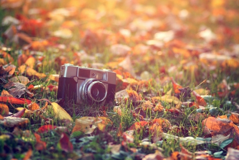 Photo session in the fall