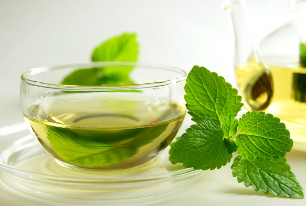 Mint infusion for colds
