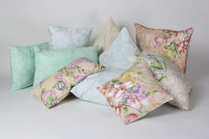 Pillows with padding polyester