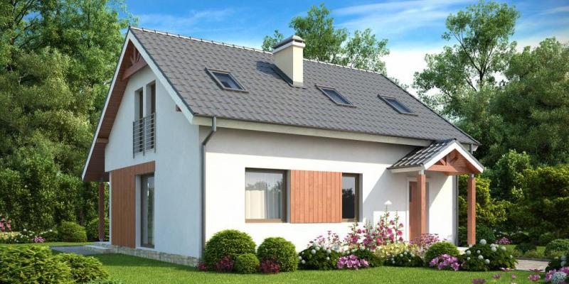 Country house design - economical project